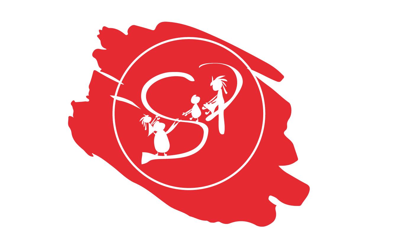 logo spinola solidaria